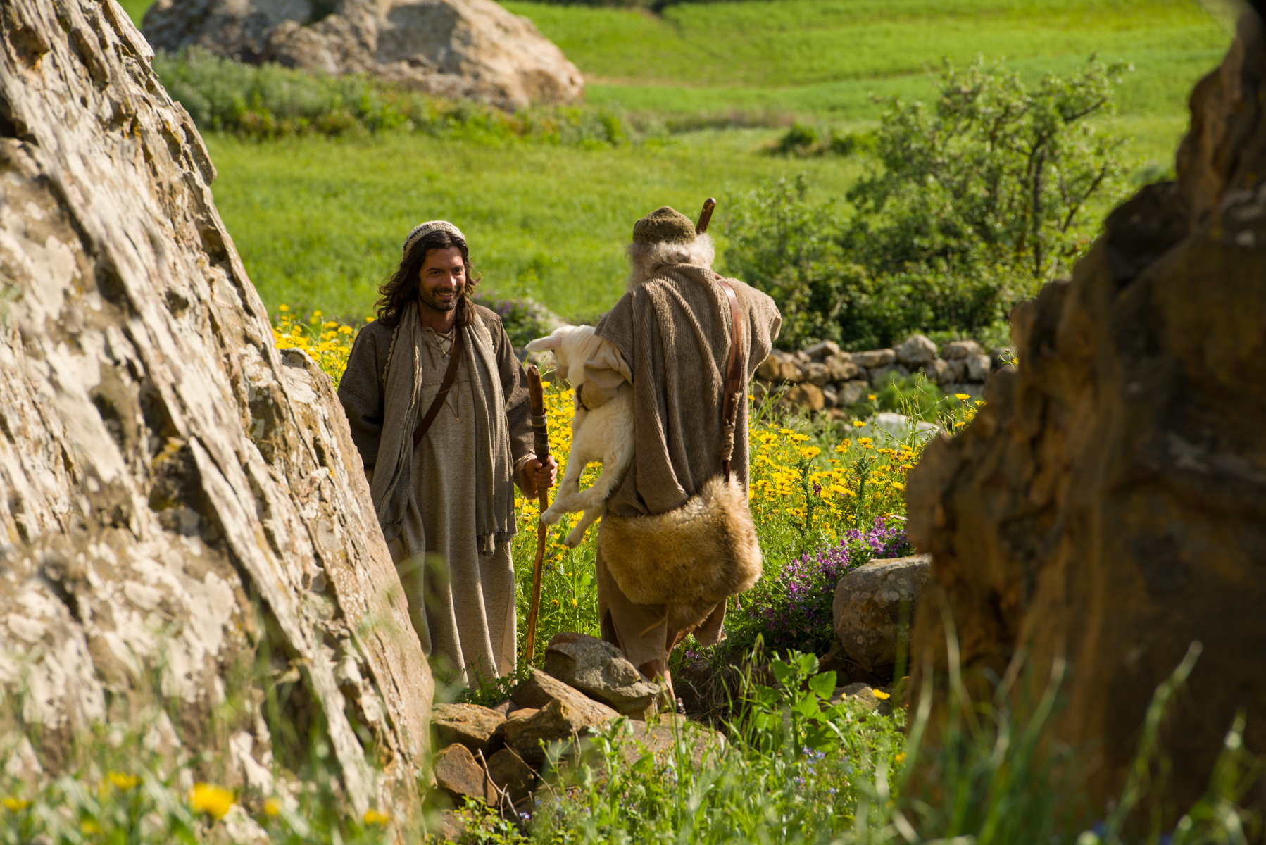 Jesus Declares the Parable of the Lost Sheep -