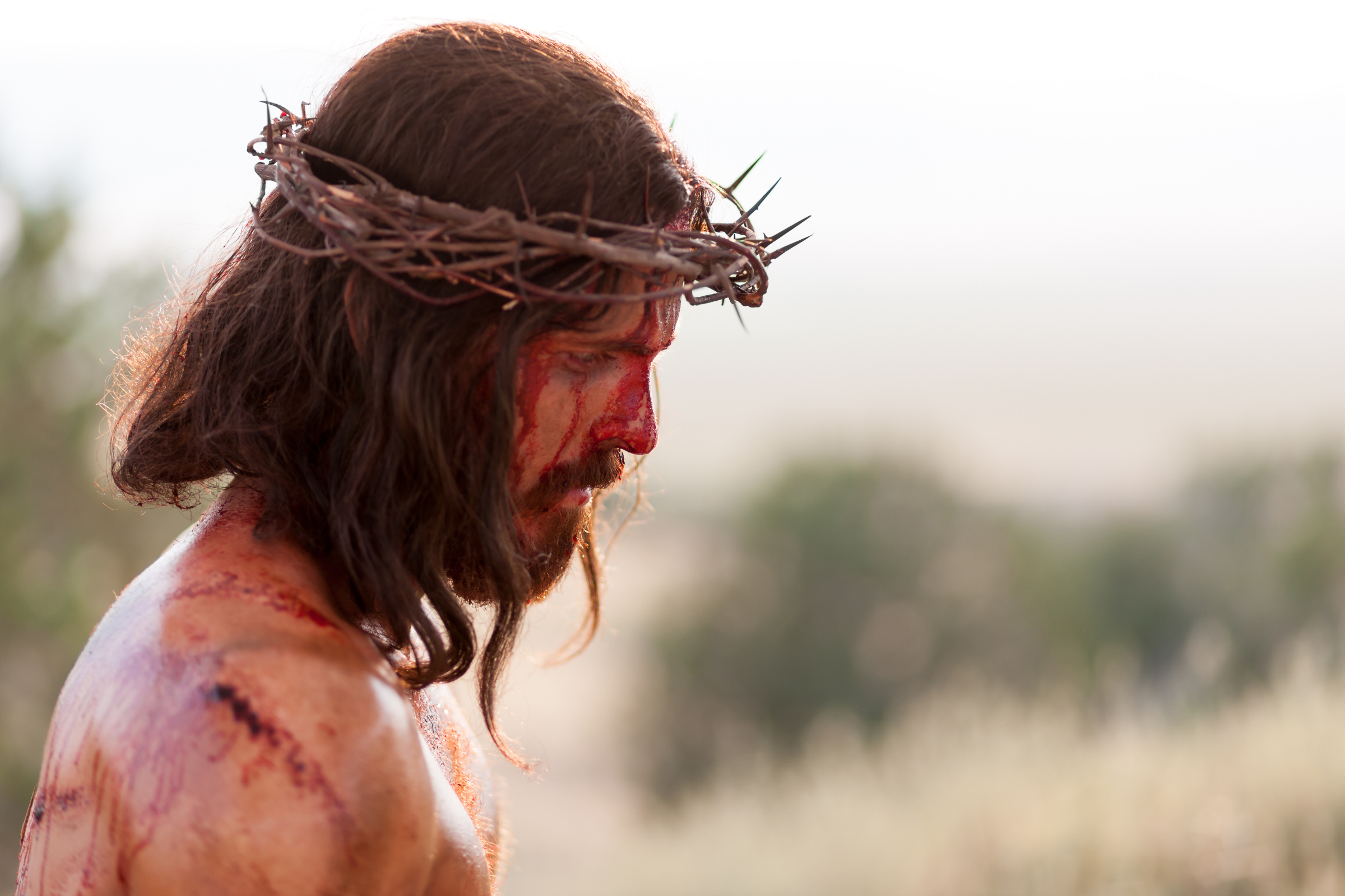 Jesus Is Scourged and Crucified  Jesus Is Scourged and Crucified