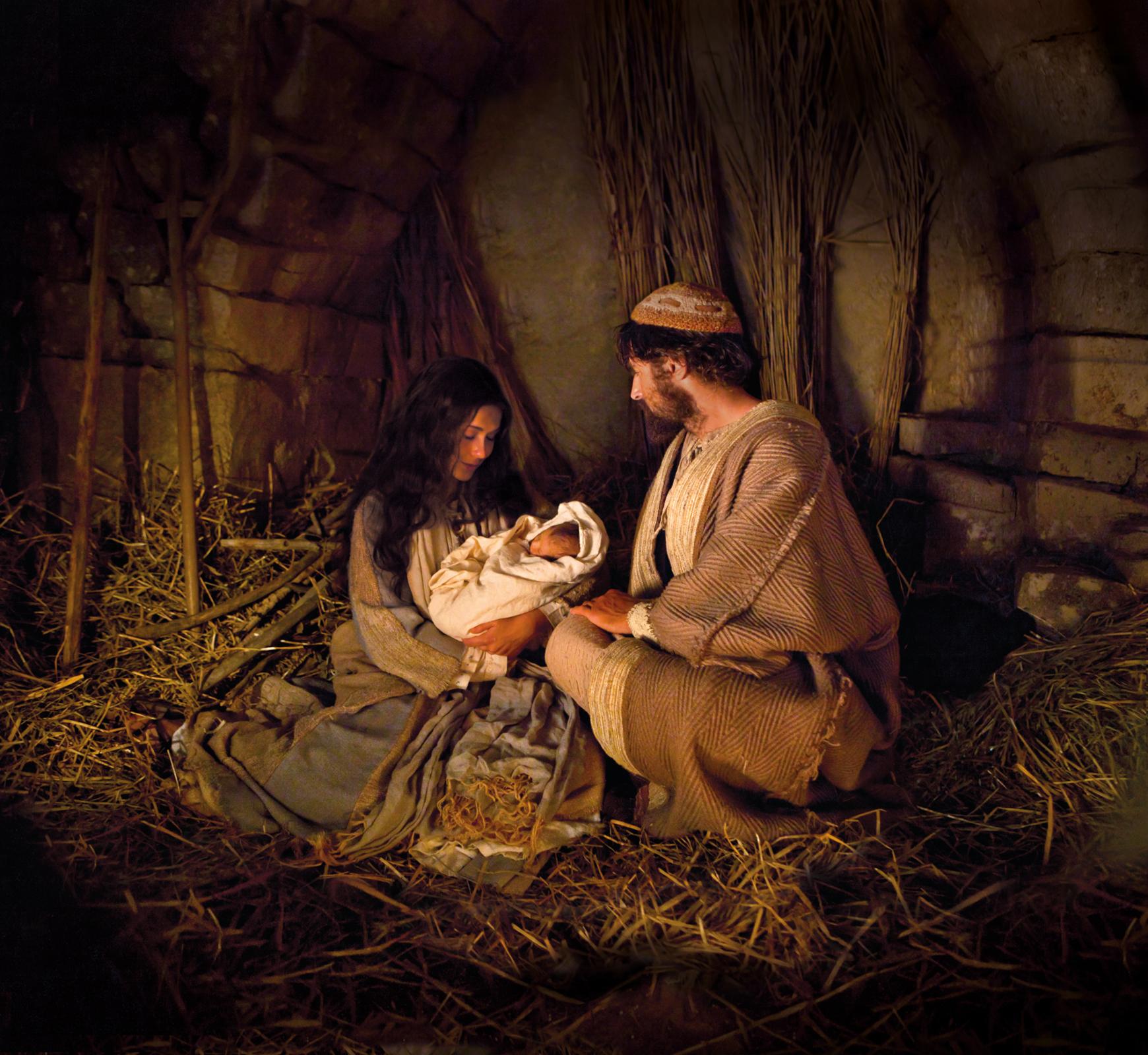 The Nativity - The Nativity