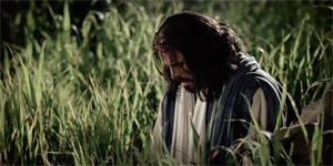 The Savior Suffers in Gethsemane