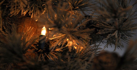 experience an old-fashioned christmas in nauvoo - church news and