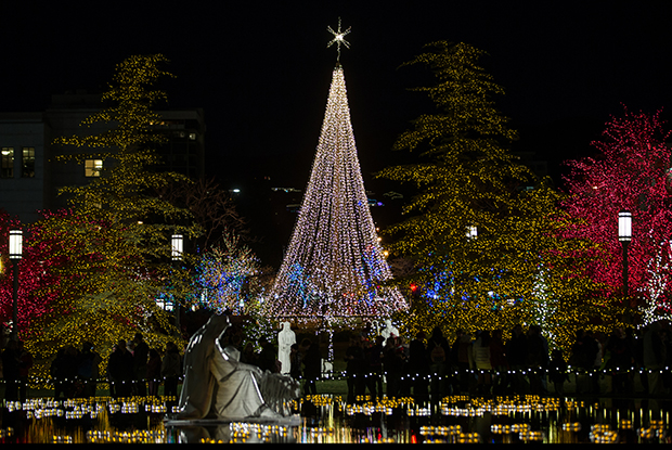 Temple Square Flips the Switch on 2016 Christmas Lights - Church ...