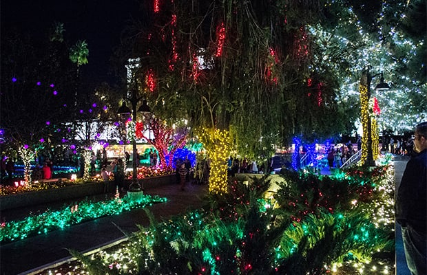Visitors stroll through the christmas lights display on the grounds of the mesa arizona temple photo by clint adair