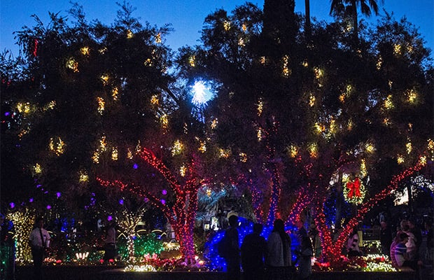 Visitors stop to look at christmas lights covering trees and bushes on the grounds of the mesa arizona temple photo by clint adair
