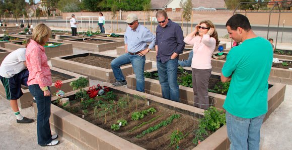 Superbe Community Garden Helps Stake, Families Grow Together
