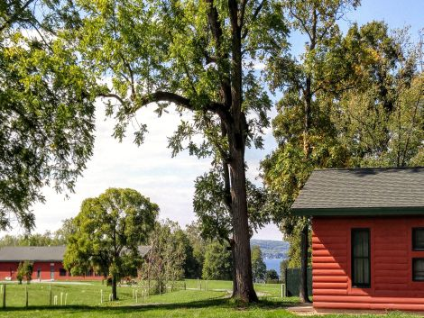 a cabins cabin norrienew rentals york reserve active in campsite outdoors cozy new camping articles ny