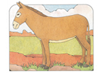 Primary Cutout Illustration Donkey