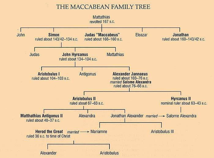 The Maccabean Family Tree