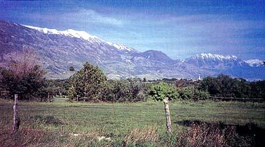 Utah Valley scene