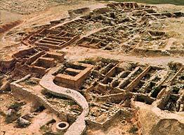 Western Negev Desert