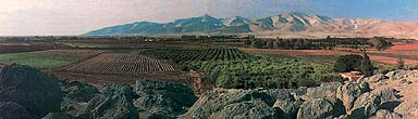 Dothan Valley