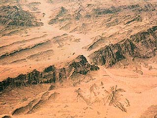 Wadi Feiran: Oasis