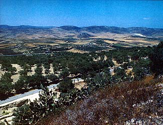 Tel Samaria