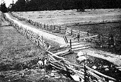 Split-rail fences
