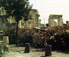 Outside View of Synagogue