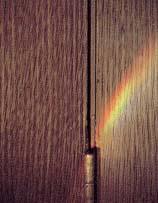 wood-grained doors