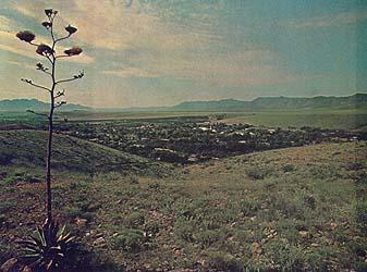 Colonia Juarez