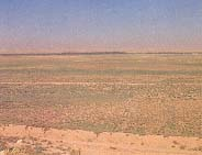 westward toward the Tigris River