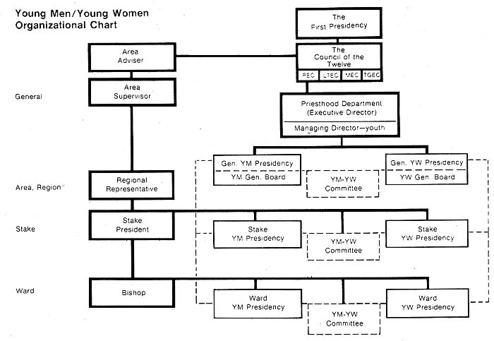 Young Men / Young Women Organizational Chart