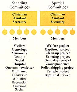 Standing and Special Committees