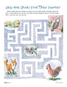 Help the Chicks Find Their Mother maze