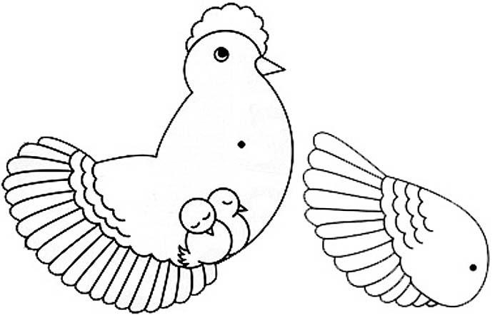 Hen's body
