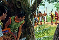 Amlicites joined Lamanites