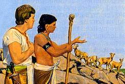 Ammon sent to watch king's flocks