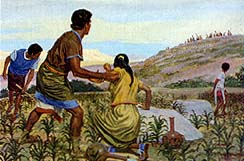 Lamanites wanted food of Zeniff