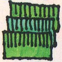 Layer grass