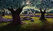 Gethsemane Grove