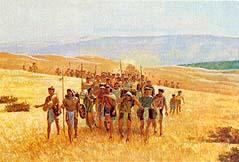 Some Nephites travel north
