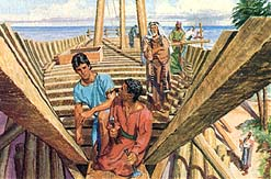They help Nephi build the ship