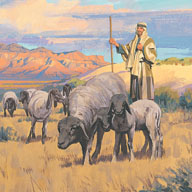 A shepherd lost one of his sheep