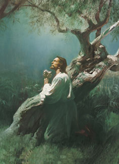 Christ in Gethsemane