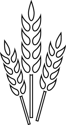 coloring pages on wheat - photo#19