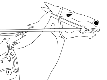 drawing, horse with reins