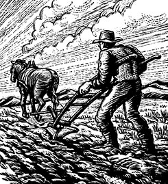 man and horse plowing