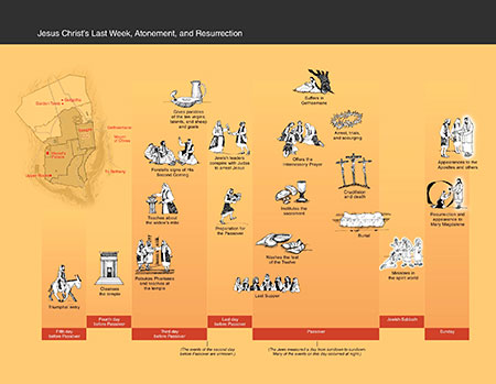 new testament study guide pdf