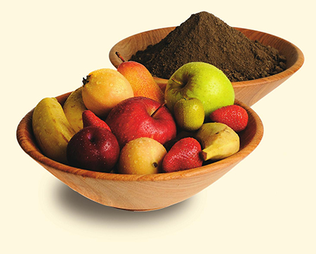 bowls of dirt and fruit