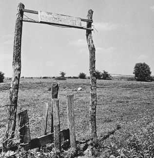 fenceposts in field