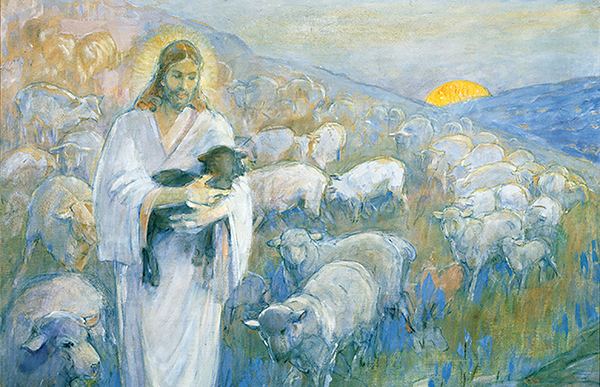Rescue of the lost sheep