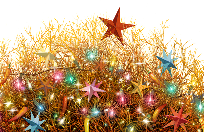 Tumbleweeds And Christmas Stars Ensign December 2016 Ensign