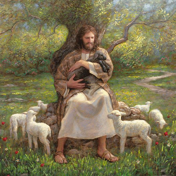Christ with sheep