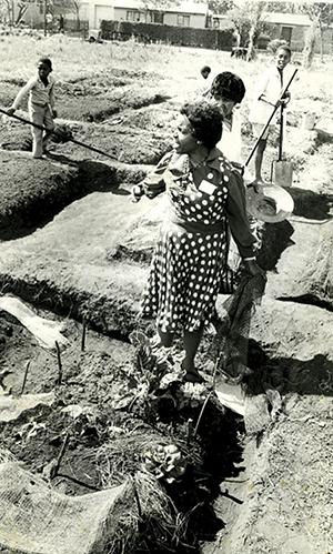 Julia working in a community garden