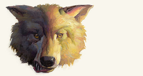 wolf's head, half dark and half light
