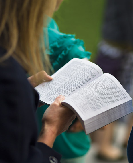 person holding scriptures