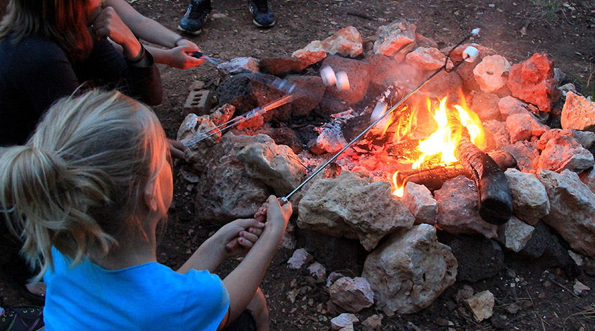 Young women roasting marshmallows around a campfire